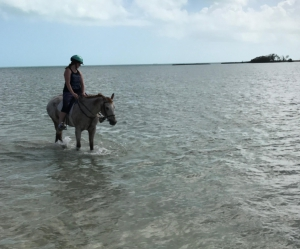 Riding in Bahamas (Riding to the countryside) © Roland